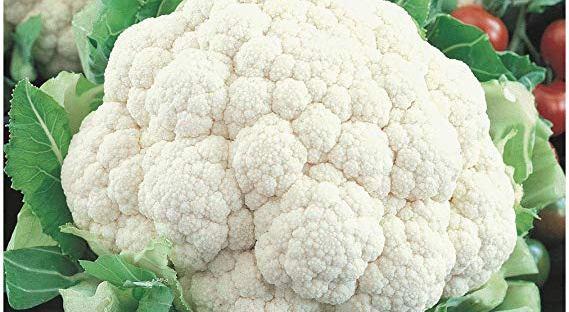 food vegetables dra martha castro noriega mexico usa