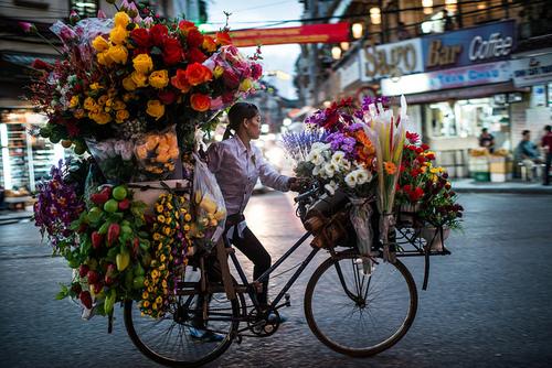 cycling flowers dra martha castro tijuana mexico california america usa