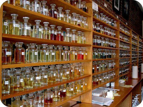 perfume channel dr martha castro noriega mexico