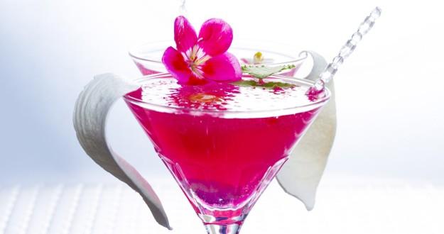 exotic drinks dra martha castro noriega tijuana california america