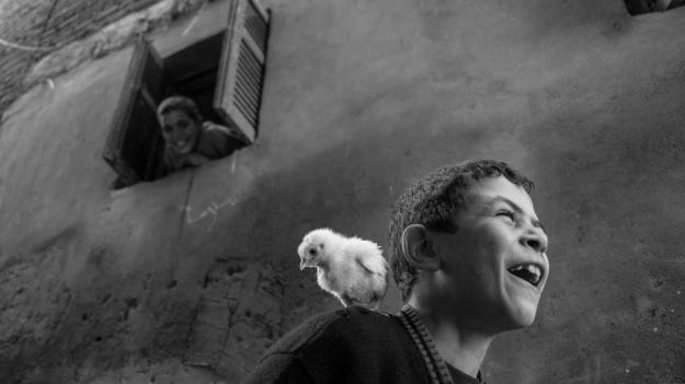 happiness dra martha castro tijuana