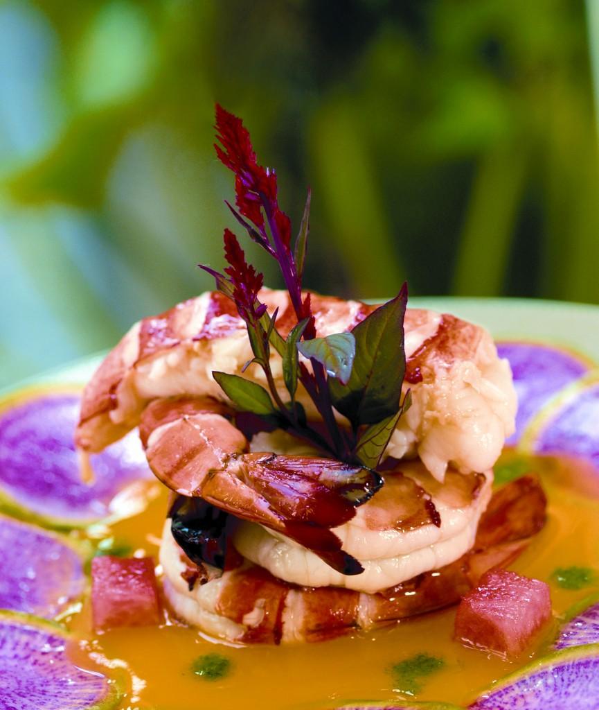 exotic food dra martha castro noriega