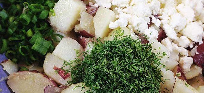 potato salad dra martha castro noriega tijuana mexico