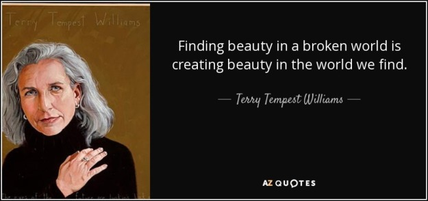 beauty motivation inspiration quotes  dra martha castro tijuana