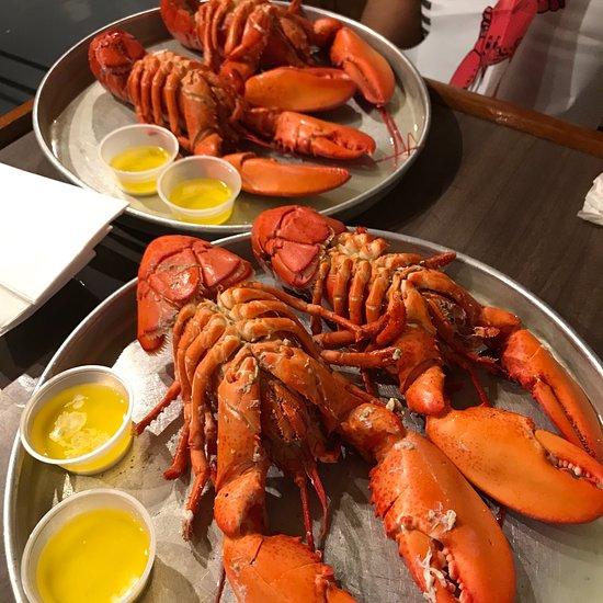 eat lobster dra martha castro tijuana mexico