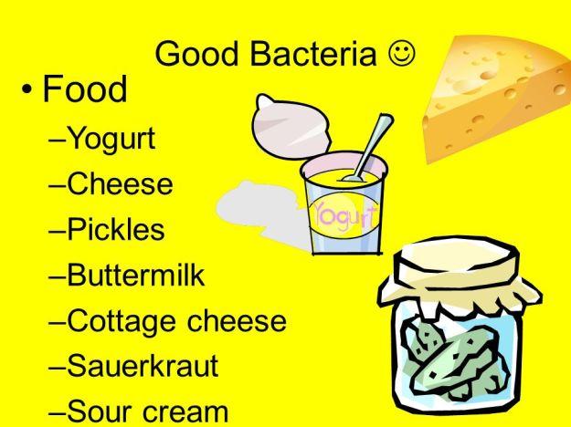 good bacteria dra martha castro noriega