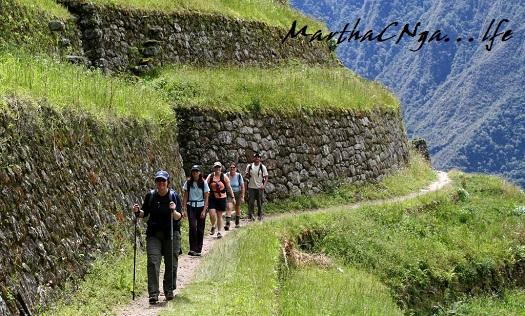 trails dra martha castro tijuana