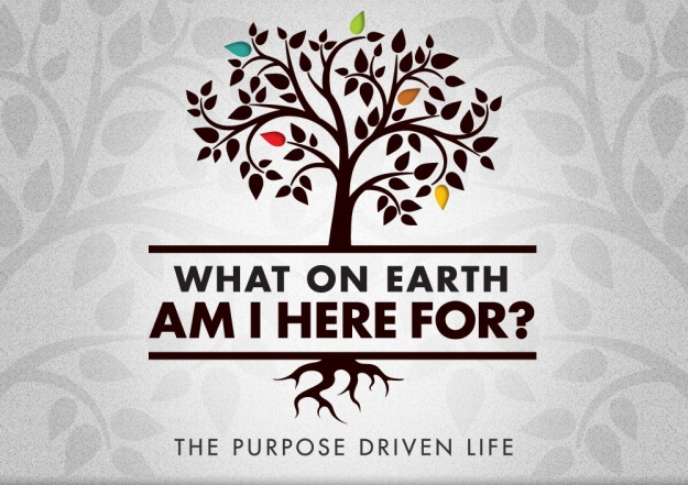 purpose life dra martha castro tijuana mexico california america