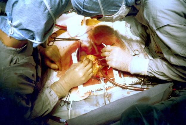 heart dra martha castro noriega tijuana baja california los angeles america usa