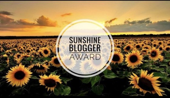 sunshine blogger award dra martha castro tijuana baja california usa america