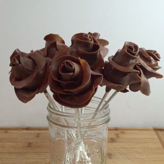 chocolate roses love dra martna castro noriega tijuana baja california