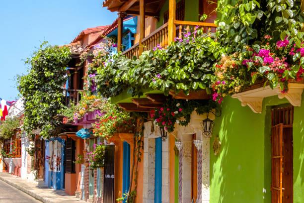 inspiration nature flowers balconies france spain germany mexico dr martha castro tijuana